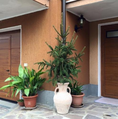 05 Vignali Simone Infissi-Style Portone per garage style legno
